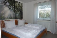 Schlafzimmer-Lachmöwe