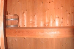 Sauna-Seeigel